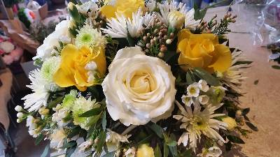 Posy of Fresh Flowers